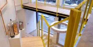 architecture interieure renovation bureau ambiance jardin agence avous