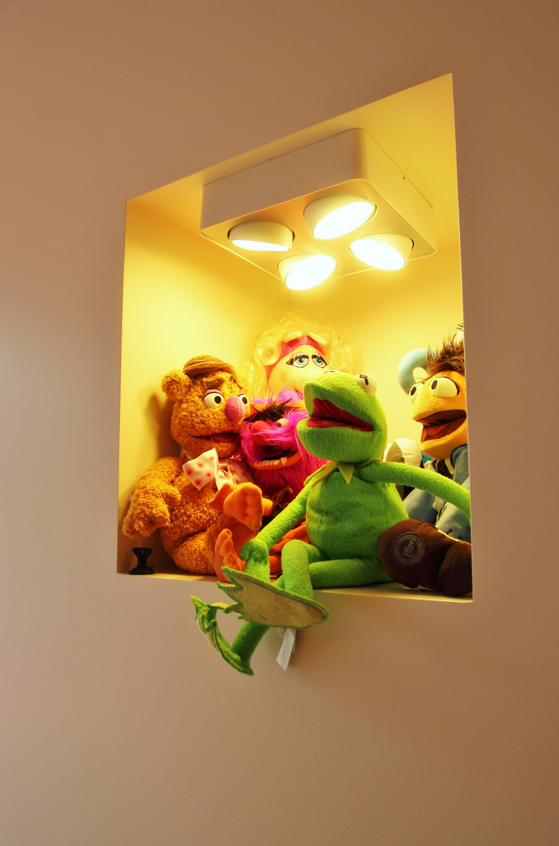 appartement avec terrasse bambou muppet show agence avous